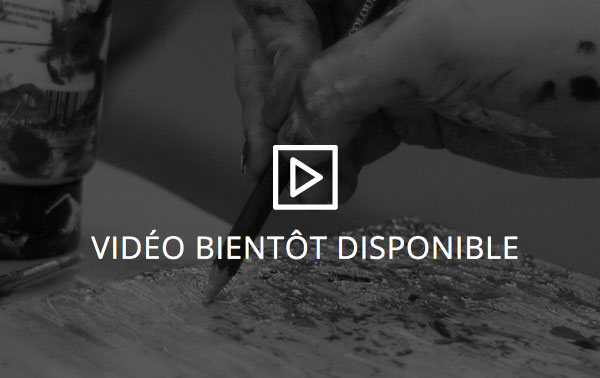 Video, Galerie1809