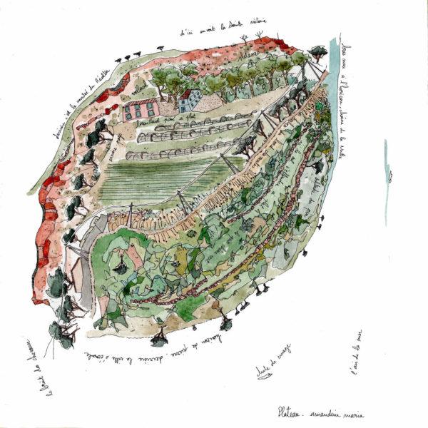 amandinemaria plateau11