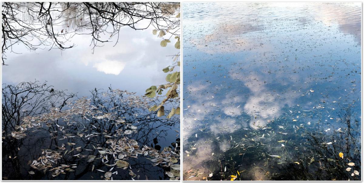 photo reflets ciel nuage