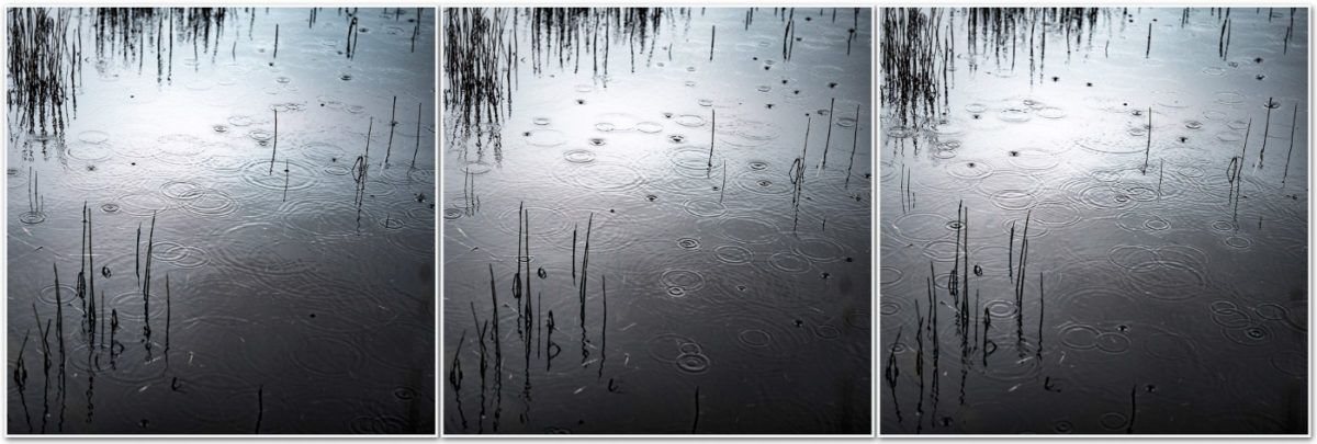 photographie eau mare